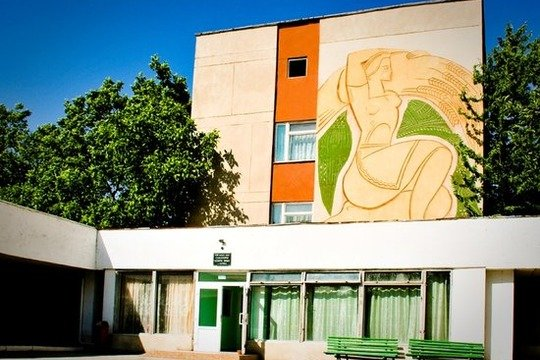 Санаторій «Золота Нива» Сергіївка Фото №39