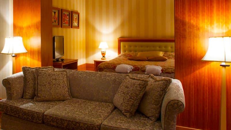 Санаторій «Ріксос Прикарпаття» Трускавець  2-кімнатний Люкс Панорамний Фото №2