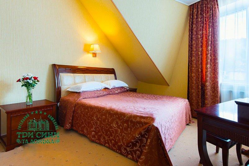 Готель «Три Cини та Донька 4 *» Східниця  Двокімнатний Люкс Фото №4