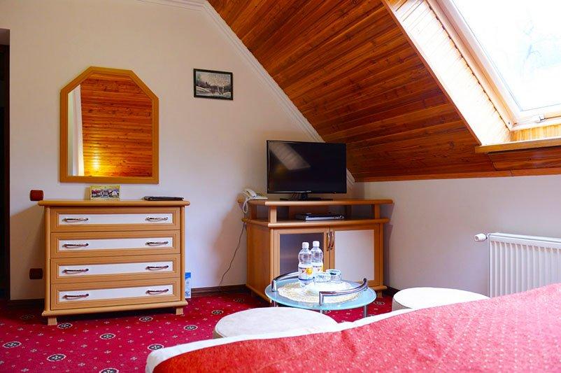 Отель «ДиАнна» Сходница Однокомнатный Стандарт Classic Фото №4