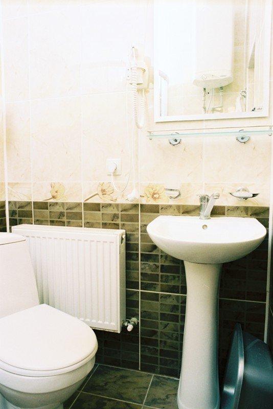 Санаторий «Березовый Гай» Хмельник 2-х комнатный Люкс с камином Фото №1