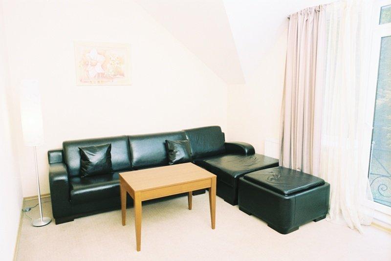 Санаторий «Березовый Гай» Хмельник 2-х комнатный Люкс с камином Фото №7