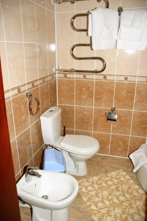 Санаторий «Квитка Полонины» Закарпатье 2-местный однокомнатный Улучшенный номер Фото №6