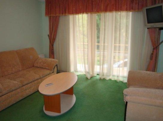 Санаторий «Карпаты» Чинадиево 2-х комнатный одноместный номер Люкс (корпус№ 3) Фото №3