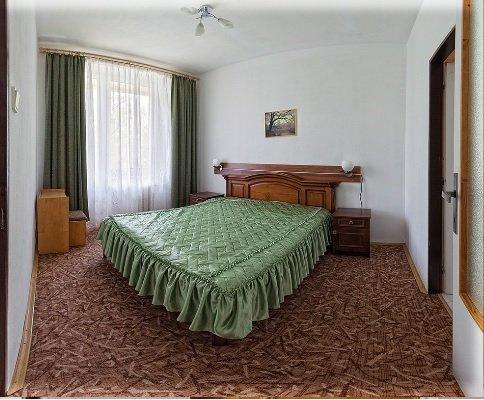 Санаторий «Карпаты» Чинадиево 2-х комнатный одноместный номер Люкс (корпус №1) Фото №1