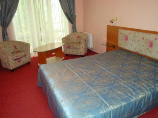 Санаторий «Карпаты» Чинадиево 1-комнатный одноместный номер Люкс (корпус № 3) Фото №1