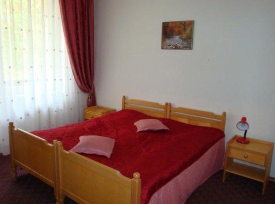Санаторий «Карпаты» Чинадиево 1-комнатный номер Люкс (корпус №5) Фото №1